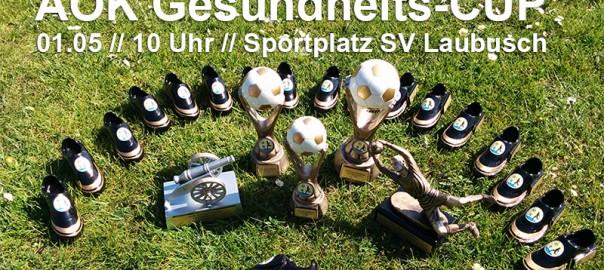 seenlandkicker-laubusch-aok-gesundheits-cup-2015